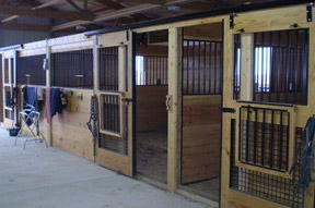 Equestrian Buildings Interior Photos